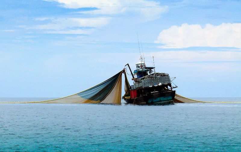 Fischfang Senegal